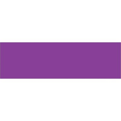 """3 x 10"""" Purple Inventory Rectangle Labels"""
