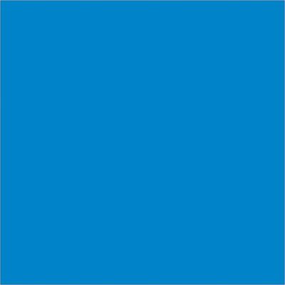 """4 x 4"""" Light Blue Inventory Rectangle Labels"""