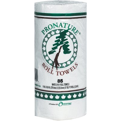 Advantage® 2-Ply Paper Towels
